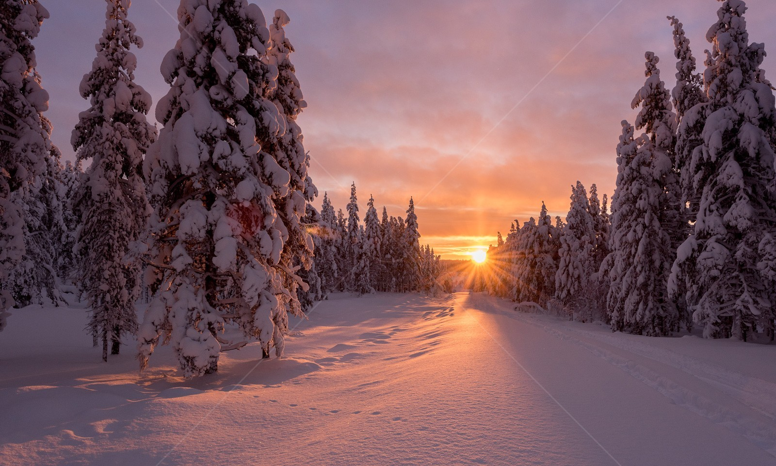 Snow covered sunset path